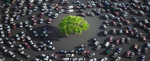 L'arbre, la simple présence